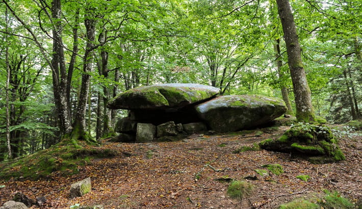 Dolmen Chevresse situé dans la forêt de Breuil-Chenue