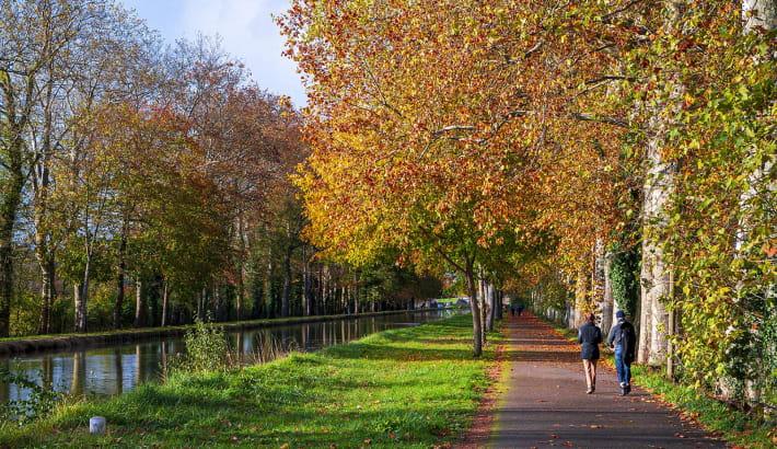 Balade à pied sur la véloroute du canal latéral à la Loire