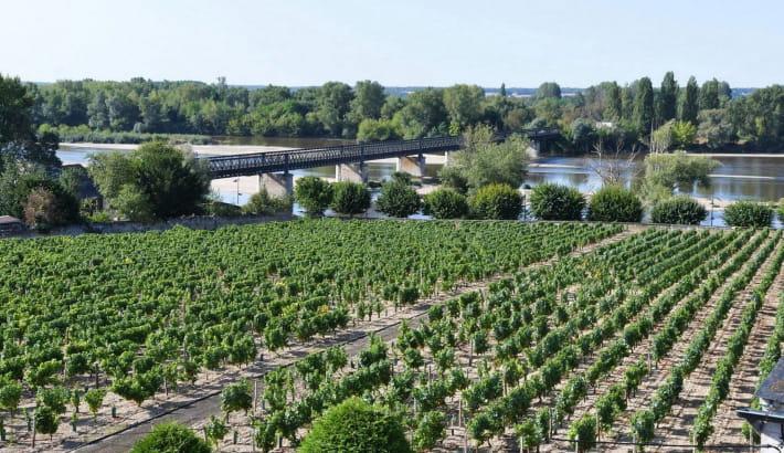 Gîte Loire et Vignoble à Pouilly-sur-Loire