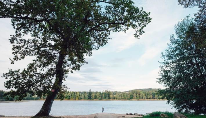 Lac des Settons dans le Morvan