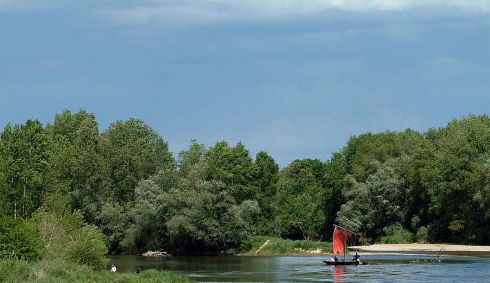 Pique-nique sur les bords de Loire au Bec d'Allier