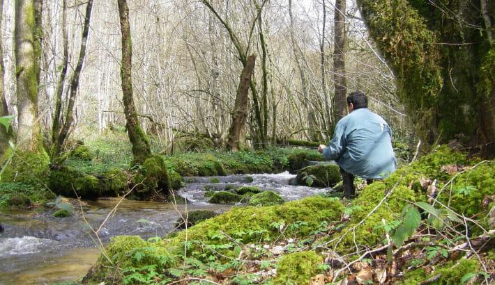 Pêche à la truite dans le ruisseau de la Maria