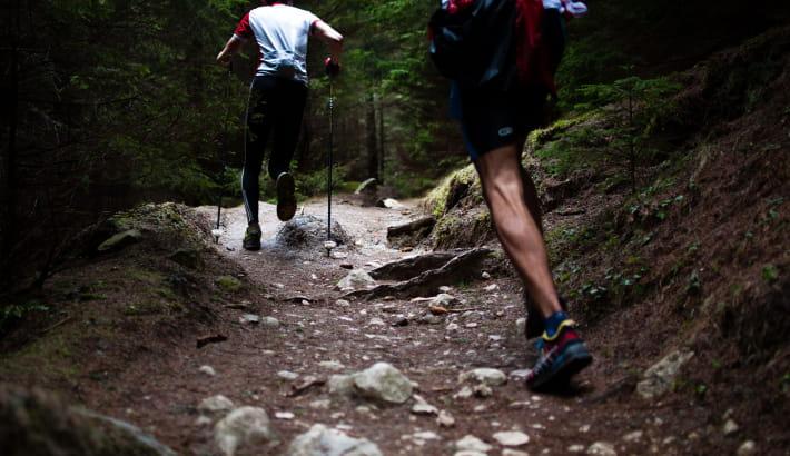 Trail-running dans le Morvan