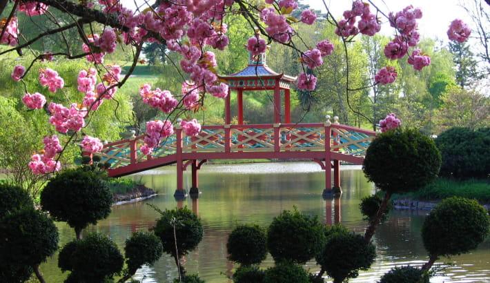 Le pont chinois avec son toit en écailles dans le Parc floral d'Apremont