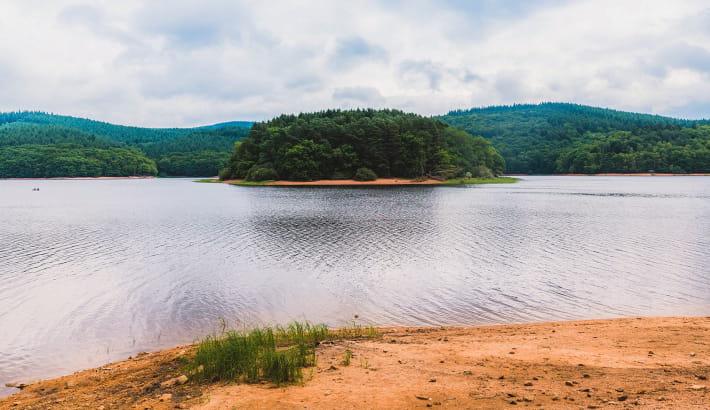 Île en vue sur le lac de Chaumeçon dans le Morvan
