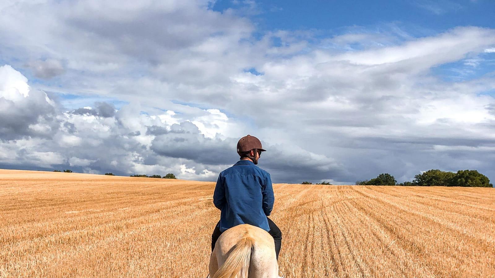 Balade à cheval dans les champs