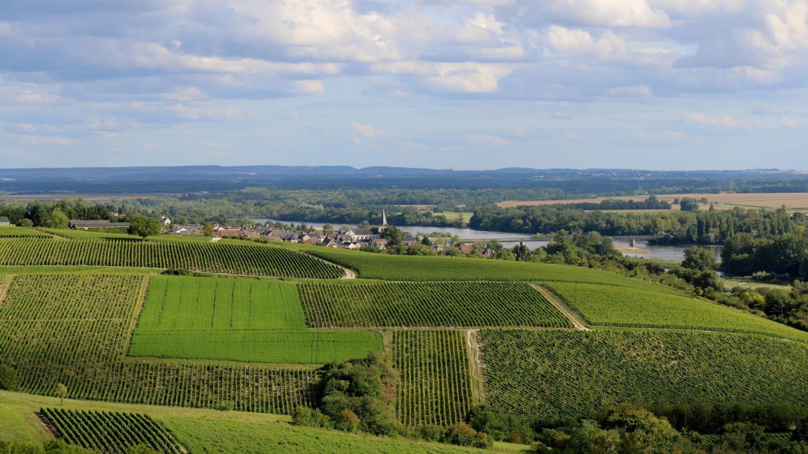 Vue sur Pouilly-sur-Loire depuis Les Loges