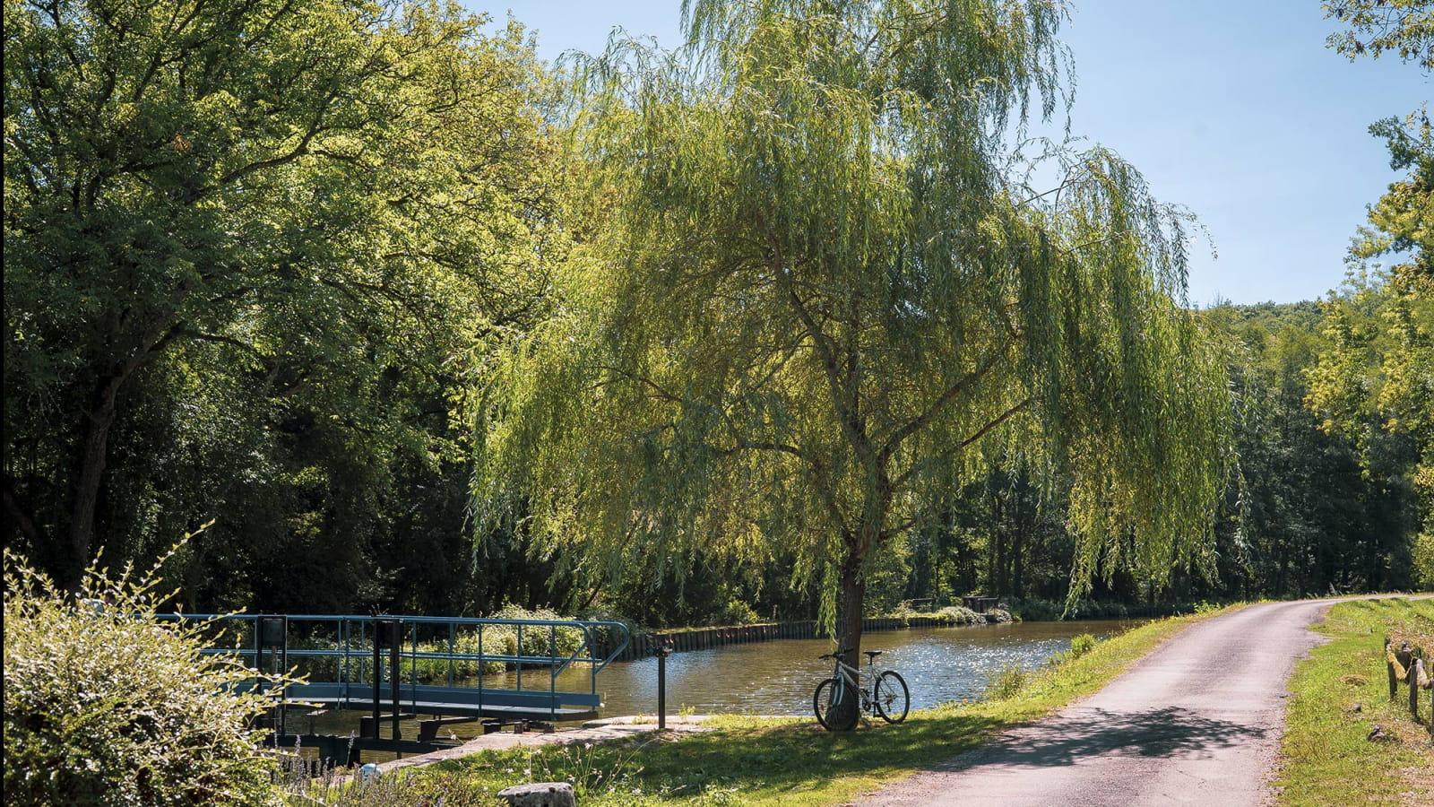 Vélo sur le Canal du Nivernais