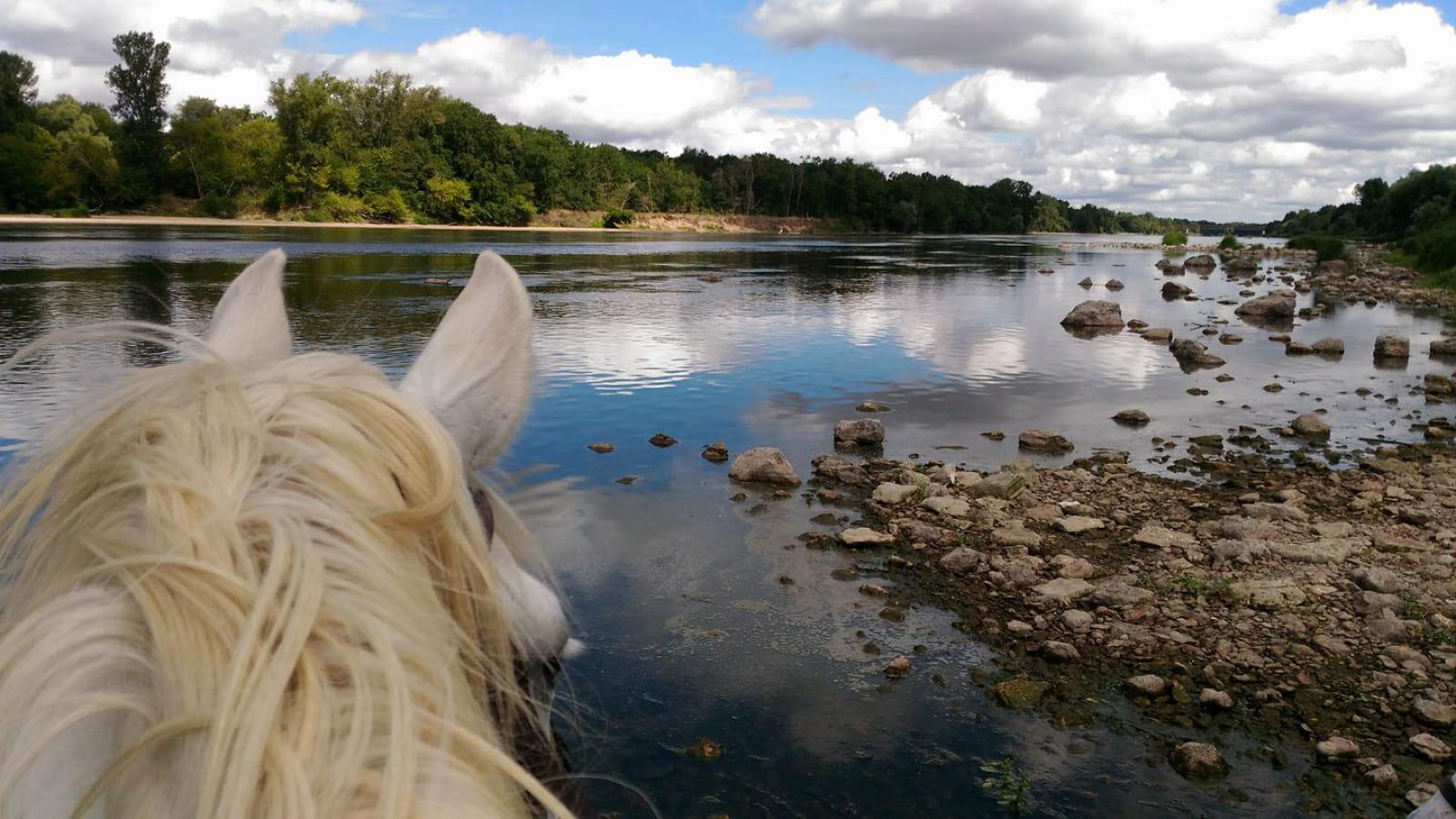 Vue sur la Loire à cheval